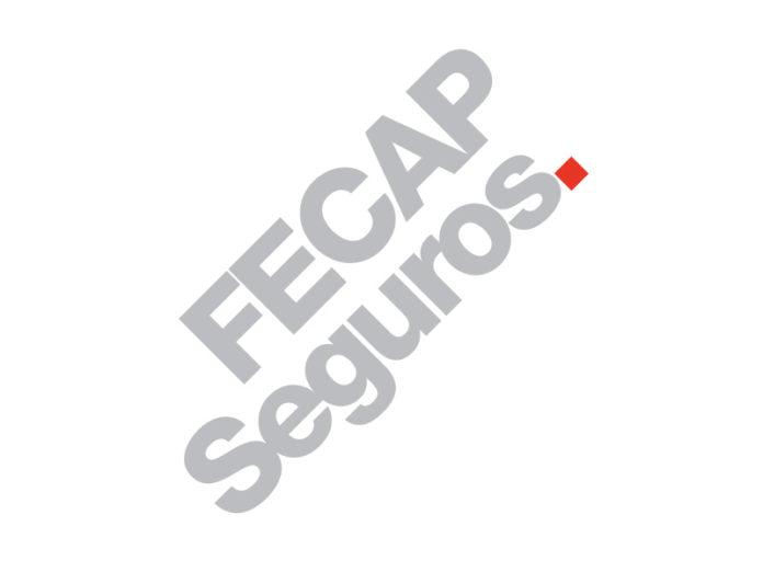 FECAP Webinar discute o seguro em um mundo de incertezas